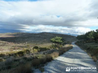 paseos sierra madrid;caminatas sierra madrid;rutas senderismo madrid señalizadas